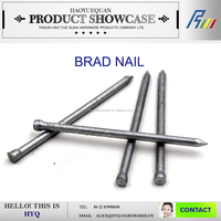 Low price brad finish nail from Tianjin factory,China