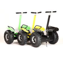 Dos ruedas Easy Rider de scooter eléctrico