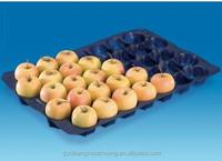 Custom China Supply FDA/SGS Food Grade holesale Plastic Pretty Fruit Trays