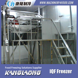 China Factory Sweet Corn iqf quick freezer for green peas