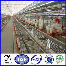 Multi-Tiers 96 Chicks Nigeria Poultry Farming Metal Egg Chicken Cage / Poultry Cage