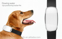 Real Time gsm/gps Dog Collar Tracker Pet Hidden GPS tracker for med/Large Pet, Kid, Cat Dog with Collar