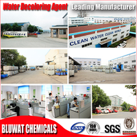 2015 BWD-01 Water Decoloring Agent Biggest Manufacturer