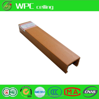 WPC Derative ceiling lightweight ceiling tile
