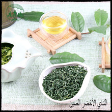 Special Green Tea leaf specialized producer