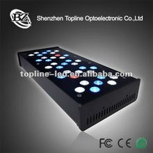 2012 NEW Acrylic beatifull Model Slimming LED Coral Reef Aqurium Lights System with computer control
