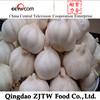 Jining fresh Natural Garlic ( Natural) Garlic supplier