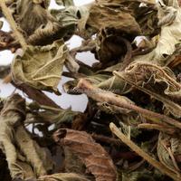 100% xian he cao Herba Agrimoniae