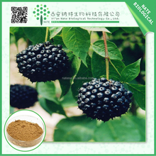 TOP grade Siberian Ginseng extract/free sample Acanthopanax senticosus powder/low price Eleutheroside(B+E) extract