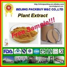 Top Qualit From 10 Years experience manufacture maral root extract