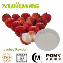 Lychee Seed Powder/ Pure Lychee Juice Extract/Natural Lychee Juice Extract