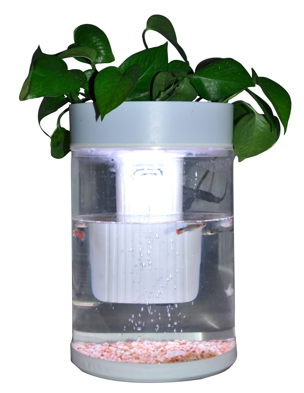 High quality acrylic built in filter white round fish tank for Fish tank top