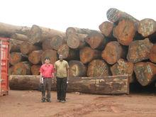 LOW PRICE African Hardwood, Logs, Sawn Timber, Lumber, Myanmar Teak