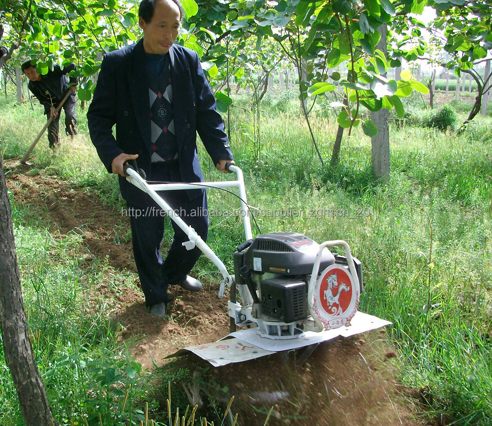 the machine in the garden