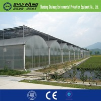 Multi span vegetable film greenhouse for sale