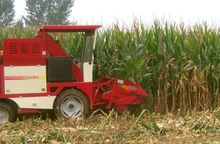Mini corn combine harvester