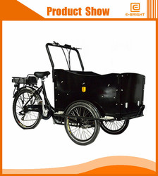 300W motor cargo e tricycle with front cargo basket