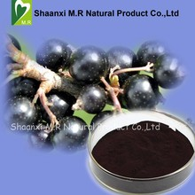 Factory Price Bulk Black Currant Extract Anthocyanins 25% Powder