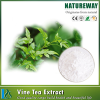 Excellent quality Vine Tea Extract Powder