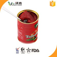 Canned Tomato Paste,Sauce,Ketchup,Puree Distributor packing in 400g Size