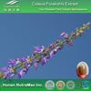 Indian Coleus Forskohlii Extact, Coleus Forskohlii ( Root) Extact Powder, Forskolin