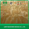 Wood veneer supplier in the linyi, China / New Zealand Rotary cut Radiate pine veneer 1270x2550mm / cheap pine wood veneer sheet