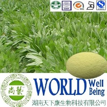 Hot sales Chicory root extract/Inulin 50%-98%/Whiten skin factory supply