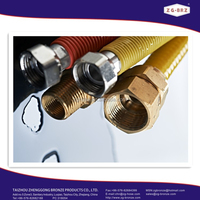 """36 """"Flexible metallic pipe for installation of gas fuel of low pressure"""
