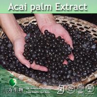 3W Manufacturer Acai palm Extract / Acai Extract / Acai fruit Extract