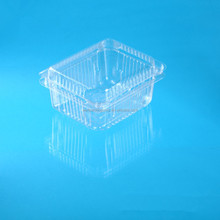 PET Material Transparent Plastic Packaging Clamshell Container