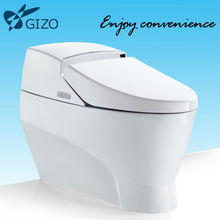 Cheap sanitary Intelligent Dual flush factory Toilet Price