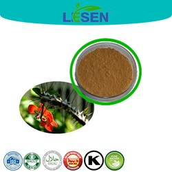 high quality crown of thorns extract powder