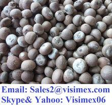 BETEL NUT (Skype Visimex06)