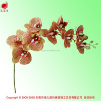 Real touch phalaenopsis orchids high quality phalaenopsis