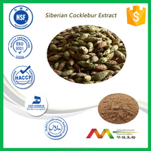 GMP High Quality Siberian Cocklebur Extract 1 Kilogram (Min. Order)