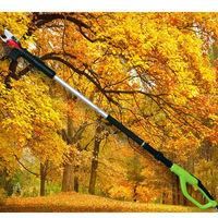 long handle pruning shears