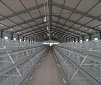 Poultry farm equipment/chicken equipment for sale