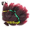 1B/bug#