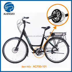 utility vehicle electrical bicycle, velo electrique sport