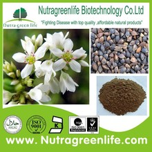 factory supply pure naural tartary buckwheat extract