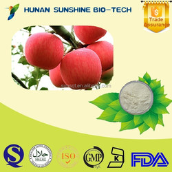 China Manufacture Health Supplements Food Additives Apple Juice Powder