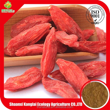 Ningxia anti-aging goji polysaccharides 20% powder is hot sale now!!!