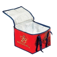 insulated lunch cooler bag with velcro closure