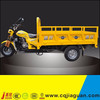 150cc Adult Pedal Tricycle