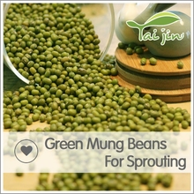 Wholesale 3.6mm green mung bean seed,green mung beans specification