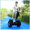 Adult Pedal Electric Go Kart/Racing Go Kart /Cheap Racing Go Cart for Sale