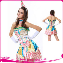Hot Carnival Adult Cinderella Dress Costume