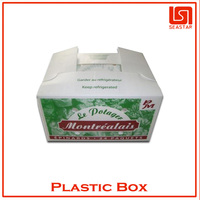Hot sale high quality corrugated custom fruit packing box plastic