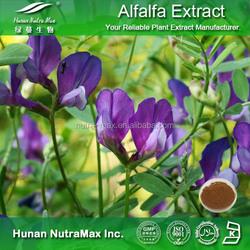 100% Natural Alfalfa Herb Extract,Alfalfa Plant Powder Extract 4:1