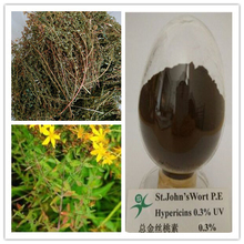 herb extracts /UV 0.3%~0.7%hypericins extract from St. John's Wort plant